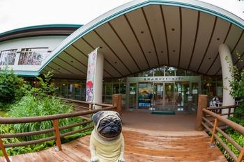 白神山地ビジターセンター